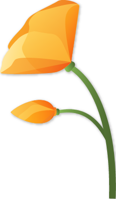 Liberman logo flower